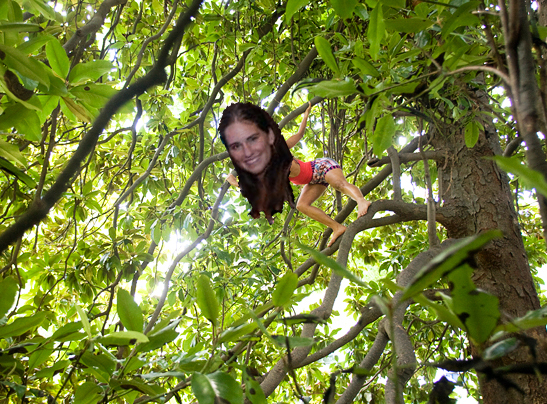Sara in the magnolia tree