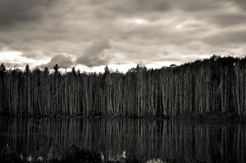 Tobias Sheck / Flickr